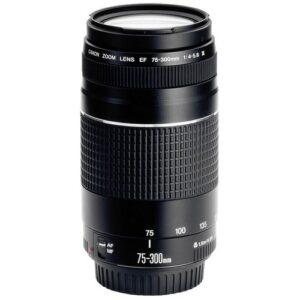 Foto 1 Obiettivo Reflex Canon EF 75-300mm/F4.0-5.6 III